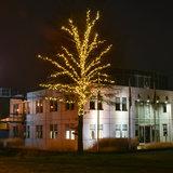 boom met 240 meter boomverlichting
