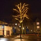 boom met 130 meter boomverlichting