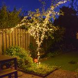 boom met 30 meter boomverlichting
