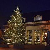 kerstboom met 300 meter boomverlichting