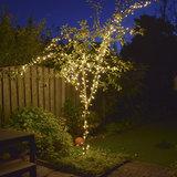 boomverlichting tuin