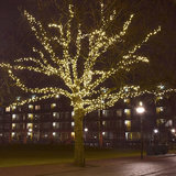 boomverlichting in grote boom