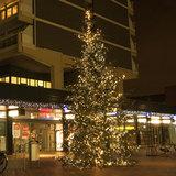 kerstboom marktplein