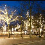 boomverlichting plein